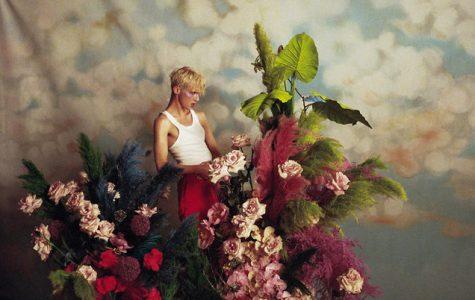 """""""Bloom"""" braves pop norm"""