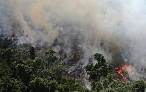 The Amazon Rainforest continues to burn.