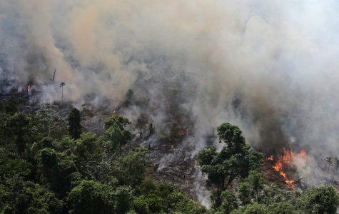 Amazon fires rage on