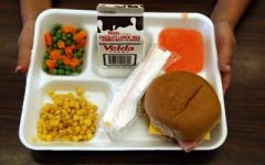 Something fishy is going on with school lunches
