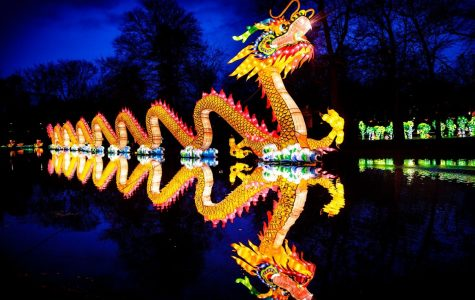 Chinese Lanterns Light Up Raleigh