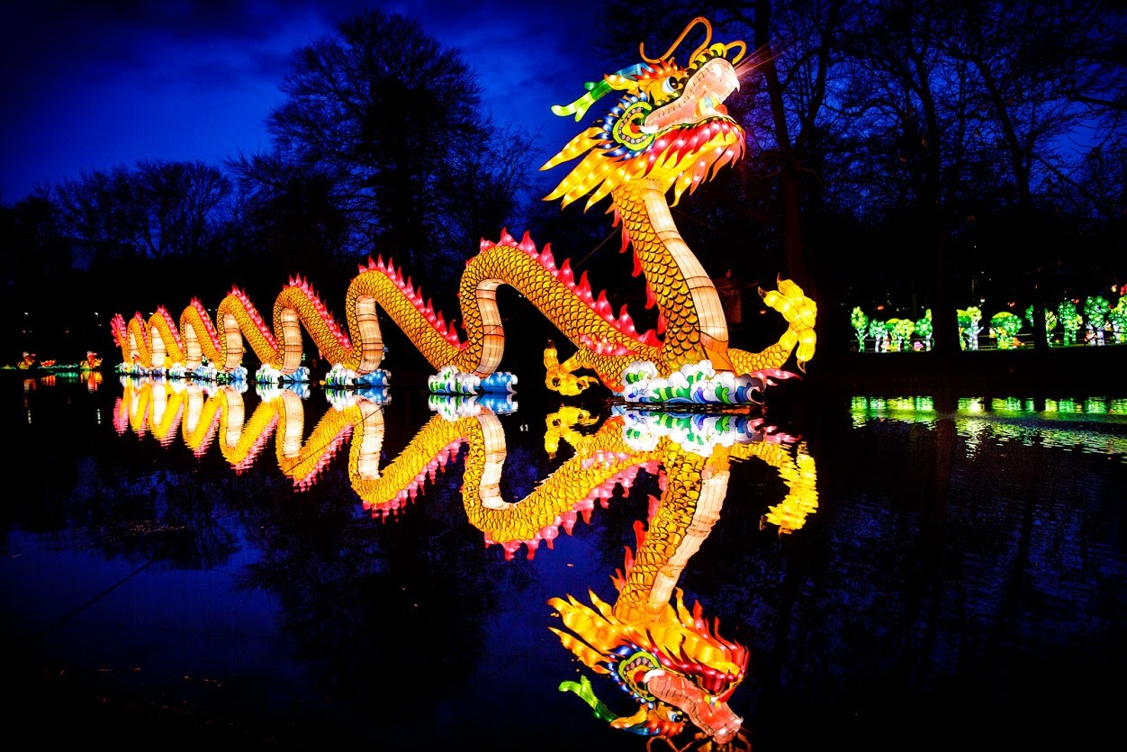 Dragon display featured at the Chinese Lantern Festival.