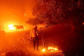 Wildfires ravage the California country side