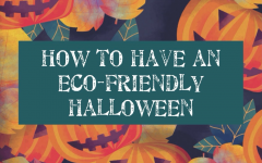 It is important to stay environmentally friendly this Halloween.