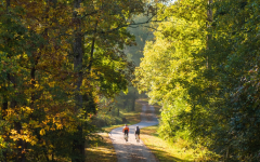 The Neuse Greenway Trail is a very scenic path that is part of the Raleigh Greenway System.