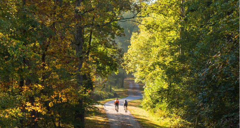 The+Neuse+Greenway+Trail+is+a+very+scenic+path+that+is+part+of+the+Raleigh+Greenway+System.%0A