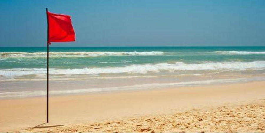 """The warning flags that litter the beaches are much easier to spot than the elusive """"red flags"""" of a narcissist."""